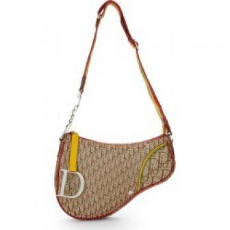 Christian Dior Multicolor Rasta Trotter Canvas Saddle Bag In Brown